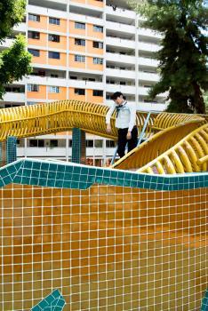 DRAGON #3 / série Disorder /Singapour